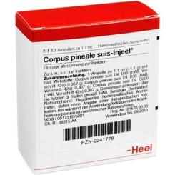 Corpus pineale suis-Injeel® Ampullen