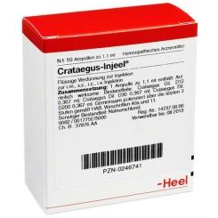 Crataegus-Injeel® Ampullen