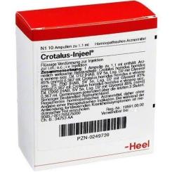Crotalus-Injeel® Ampullen