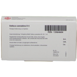 Datisca cannabina D4