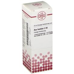 DHU Asa foetida C30 Dilution