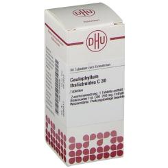 DHU Caulophyllum thalictroides C30 Tabletten