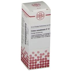 DHU Cistus canadensis D12 Dilution