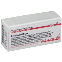 DHU Hypericum LM XXX