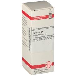 DHU Lactuca D6 Dilution