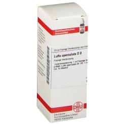 DHU Luffa operculata D8 Dilution