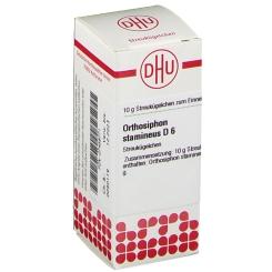 DHU Orthosiphon stamineus D6 Globuli