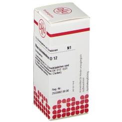 DHU Rhus toxicodendron D12 Globuli