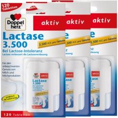 Doppelherz® aktiv Lactase 3.500 Set
