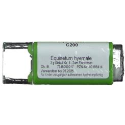 Equisetum C200