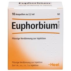 Euphorbium comp. SN Ampullen