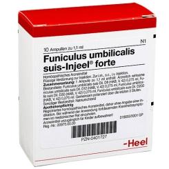 Funiculus umbilicalis suis-Injeel® forte Ampullen