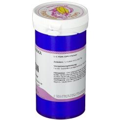 GALL PHARMA L-Lysin Pulver