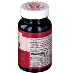 GALL PHARMA LUTEIN 20 mg GPH Kapseln