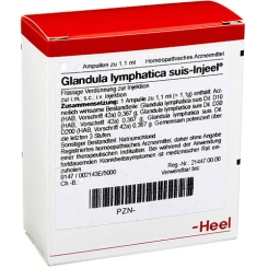 Glandula lymphatica suis-Injeel® Ampullen