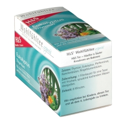 H&S Eukalyptus-Thymian Nr. 41