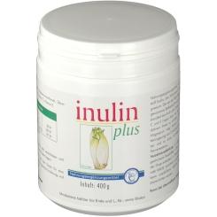 Inulin Plus Pulver