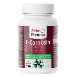 L-Carnosin 500 mg