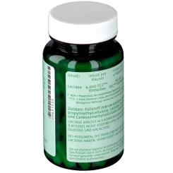 Lactase 4000 FCC Enzym