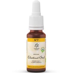 Lemon Pharma Original Bio Bachblüten Chestnut Bud No. 7