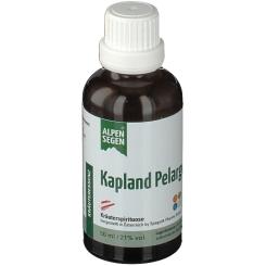 LIFE LIGHT® Alpensegen Kapland Pelargonie