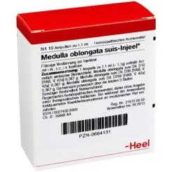 Medulla oblongata suis-Injeel® Ampullen
