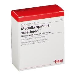 Medulla spinalis suis-Injeel® Ampullen