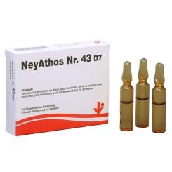 NeyAthos® Nr. 43 D7