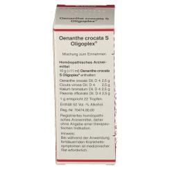 OENANTHE CROCATA S OLIGOPL