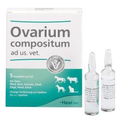 Ovarium compositum ad us. vet.