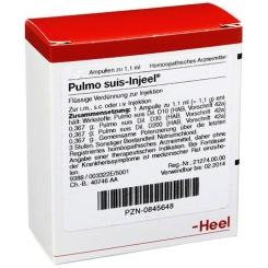 Pulmo suis-Injeel® Ampullen