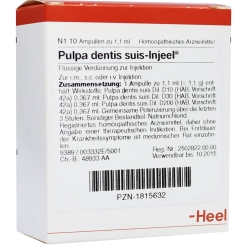 Pulpa dentis suis-Injeel® Ampullen