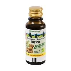 Salus® Naturreiner Pflanzentrunk Ingwer