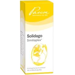 SOLIDAGO Similiaplex®