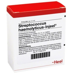 Streptococcus haemolyticus-Injeel® Ampullen