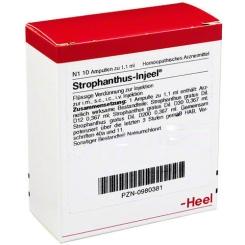 Strophanthus-Injeel® Ampullen