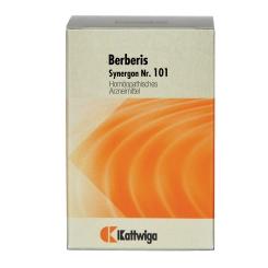 Synergon 101 Berberis Tabletten