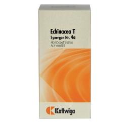Synergon 4 a Echinacea T Tabl.