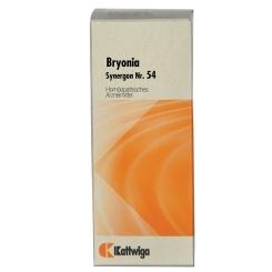 Synergon 54 Bryonia N Tropfen
