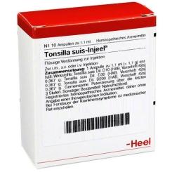Tonsilla suis-Injeel® Ampullen