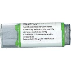 Viburnum C200