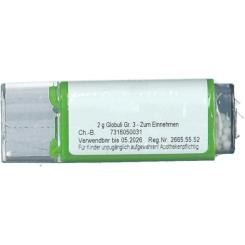 Viburnum C30