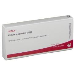 WALA® Columna anterior Gl D 6