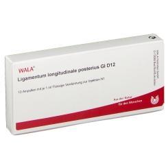 WALA® Ligamentum longitudinale posterius Gl D 12