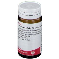 WALA® Nicotiana e foliis D 6