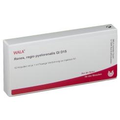WALA® Renes regio pyelorenalis Gl D 15
