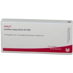 WALA® Urethra masculina Gl D 30