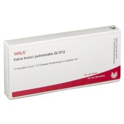WALA® Valva trunci pulmonalis Gl D 12