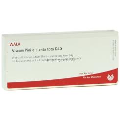 WALA® Viscum Pini e planta tota D 40