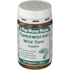 Yamswurzel Wild Yam